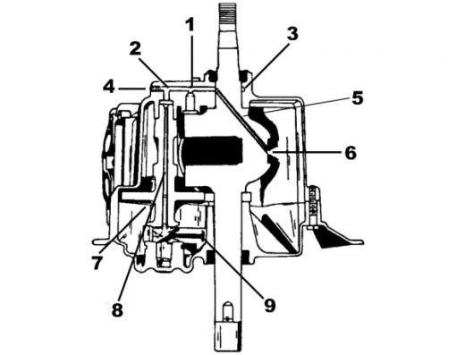 kate gosselin hot  pic 2 tecumseh engine diagrams