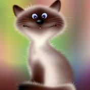 jolisa profile image
