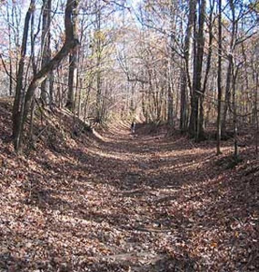 Village Creek trail in Arkansas; part of the original trail of tears.