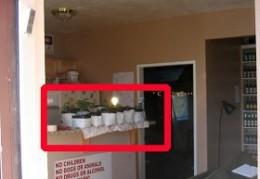 A Drug Enforcement Administration photo shows a dorm room where marijuana was grown.
