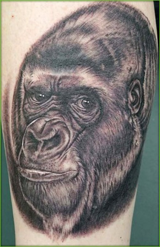 Oh like come on, who to heck is gonna get a gorilla tattoo, someone making