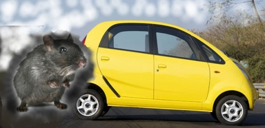 The Gerbil Powered Auto represents cutting-edge technology mated with furry rodents.