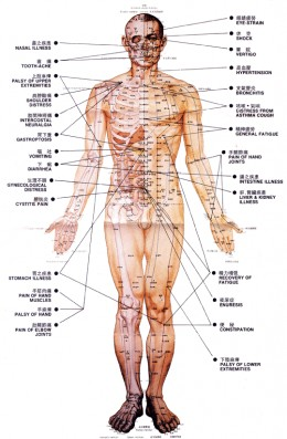 12 meridians in the body and acupuncture points