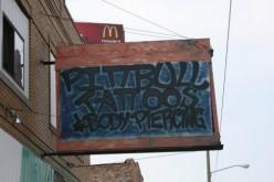 PITBULL TATTOOS in Motown   Deedsphotos
