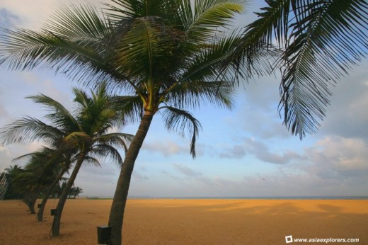 Negombo coast line is full of beautiful beaches