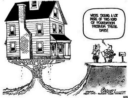 This cartoon gives us the basic idea of the instabilities caused by the speculation on the sub-prime mortgage market the ultimately imploded in Sept, 2008 that went on to affect the entire world economy.