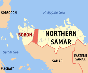 Map of Northern Samar where the Municipality of Bobon in red is.  Jessica Cox's mother Inez came from Bobon