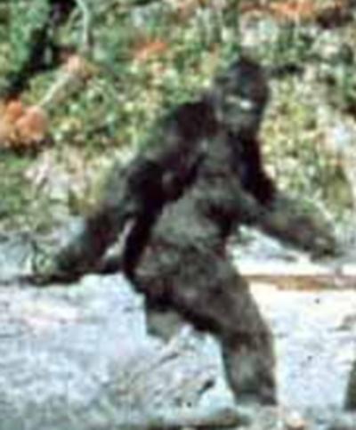 Bigfoot is fake,