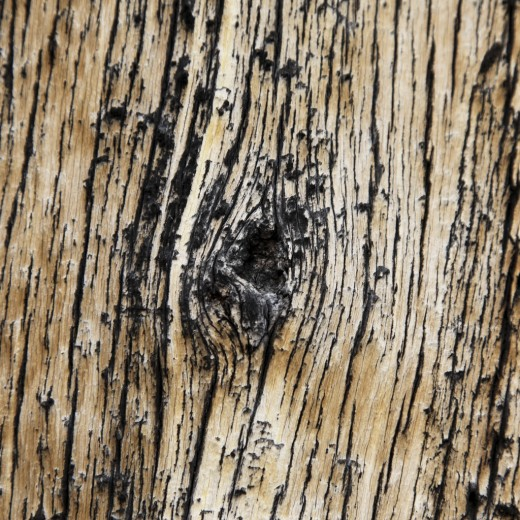 ipad wallpaper wood. Wood texture iPad Wallpaper,