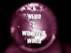 A Weird and Wonderful World of Mysteries