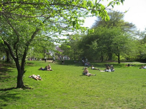 Summer fashion in action: Sunbathers in Central Park / Photo by E. A. Wright