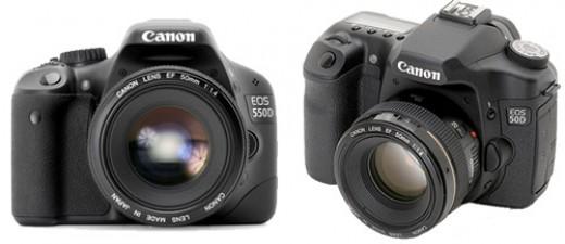 Canon Rebel T2i vs Canon EOS 50D