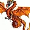 Dragon Fire profile image