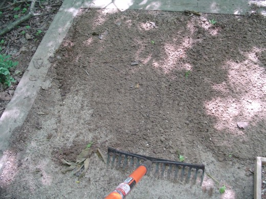 First, the sand is raked to reveal moisture. This sand is wet enough and does not require extra water