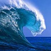 Twave99 profile image