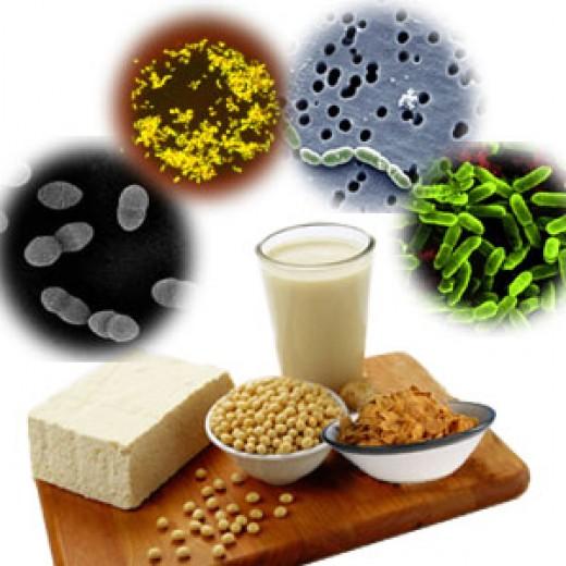 Создан биополимер для доставки пробиотиков в кишечник
