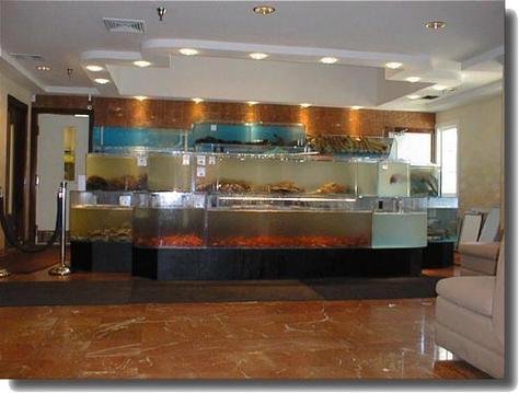 http://photos.igougo.com/pictures-photos-p125225-fish_tank.html
