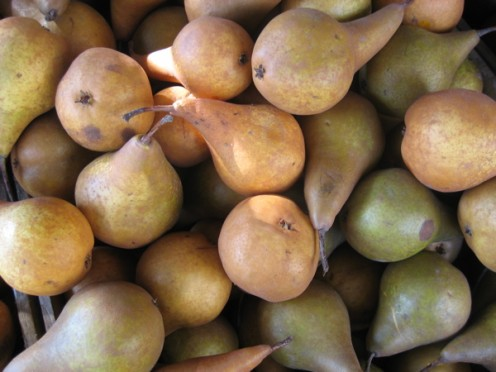 Pears / Photo by E. A. Wright