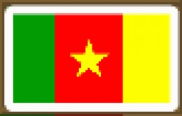 Cameroon  Yaounde  55%
