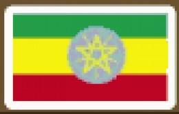 Ethiopia  Addis Ababa  65%