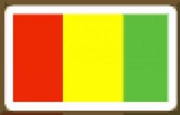 Guinea  Conakry  95%