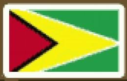 Guyana  Georgetown  15%
