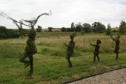Frame topiaries, tree not fully developed but you get a sense of the final shape.