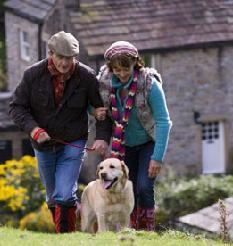 Tkae your pet on holiday and enjoy those nice long walks together