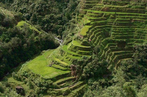 Banaue Rice Terraces in N. Luzon, Philippines.