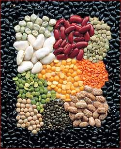 Variety Picture Courtesy of  www.fastheadlines.com/.../2009/08/pulses.jpg