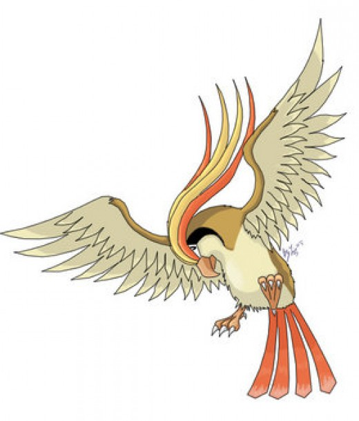 Pidgeot is the final evolution of Pidgey.