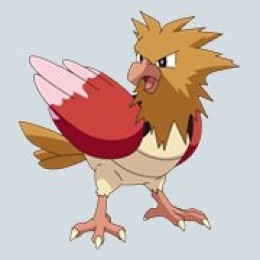 Spearow is a little bird pokemon.