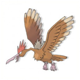 Fearow is the evolved form of Spearow and has no further evolutions.