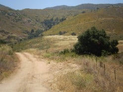 The Forest Service Access road to Black Mountain, Pamo Valley.