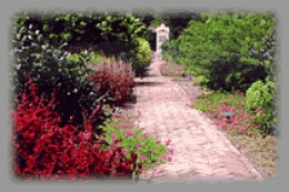 A small portion of the museum's garden.