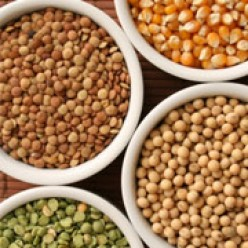 Pulses (Legumes): Seeds in a Healthy Diet