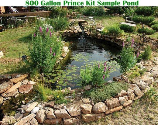 How To Choose The Right Fish Pond Liner