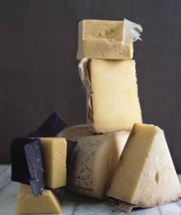 source cheeseheads