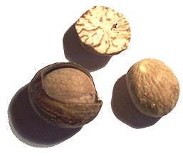 Nutmeg in public domain