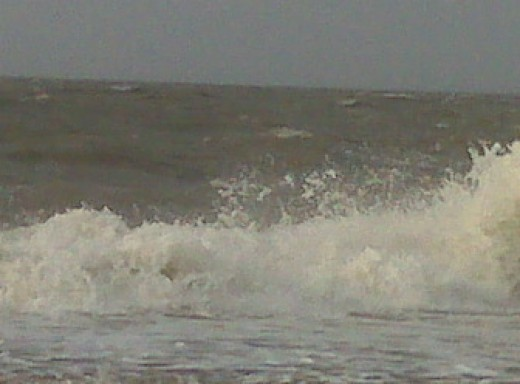Tropical storm surge Courtesy of Newell Family Fotos