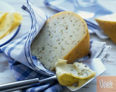 Dutch gouda cheese with cumin
