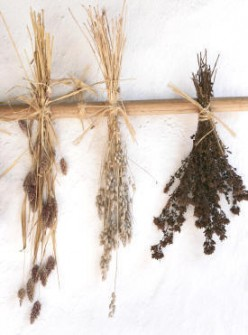 Tips and Measurements for Substituting Dried and Fresh Herbs in Recipes