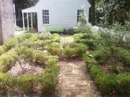 Garden leading to kitchen.