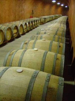 View the aging wines in the French oak barrels.