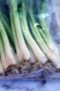 Green Onions  by Daveleb via Flickr