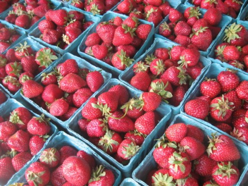 Strawberries / Photo by E. A. Wright