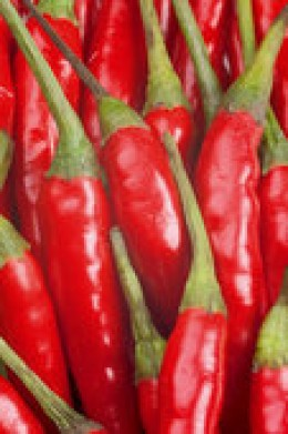 """These chili peppers contain """"capsaicin"""" and it's good for you!"""