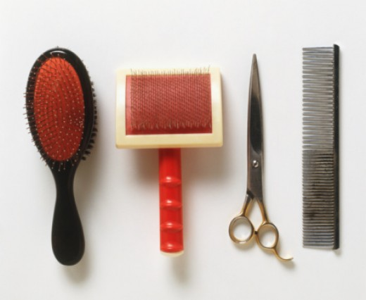 Various pet grooming supplies: Brushes, clippers and a metal tootled comb.