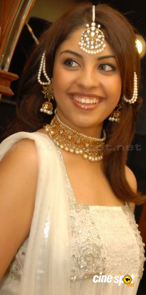 Richa South Actress High Quality New Photos • Andhra Mania Picture