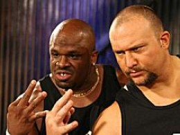 Having claimed more championships in more organizations than any other tag team, past, present or future, the Dudleys are one of the most decorated tag teams int he history of our sport, and easily the greatest to come out of the 1990s and still rem